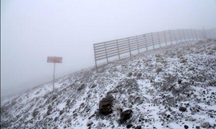 Comienza a caer la nieve en Sierra Nevada