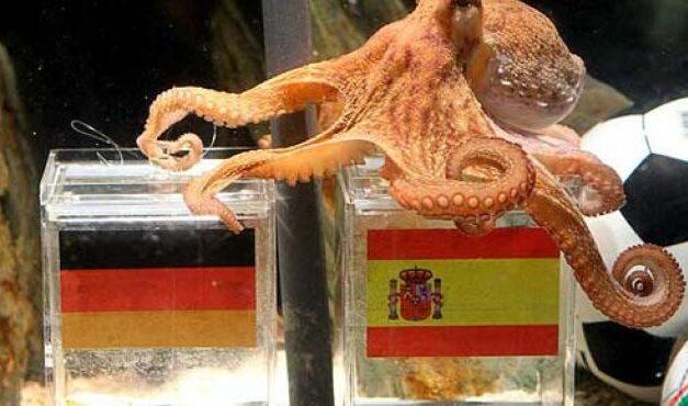 El pulpo Paul promociona Alemania en Madrid
