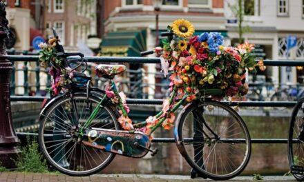 Holanda, donde la bicicleta es más valorada