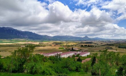 5 cosas para hacer en La Rioja