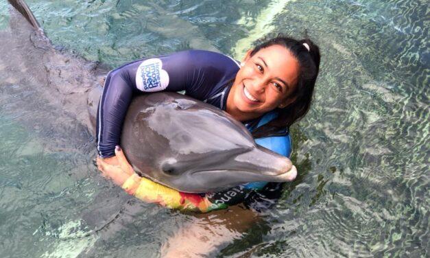 Disfruta de unas vacaciones en Riviera Maya